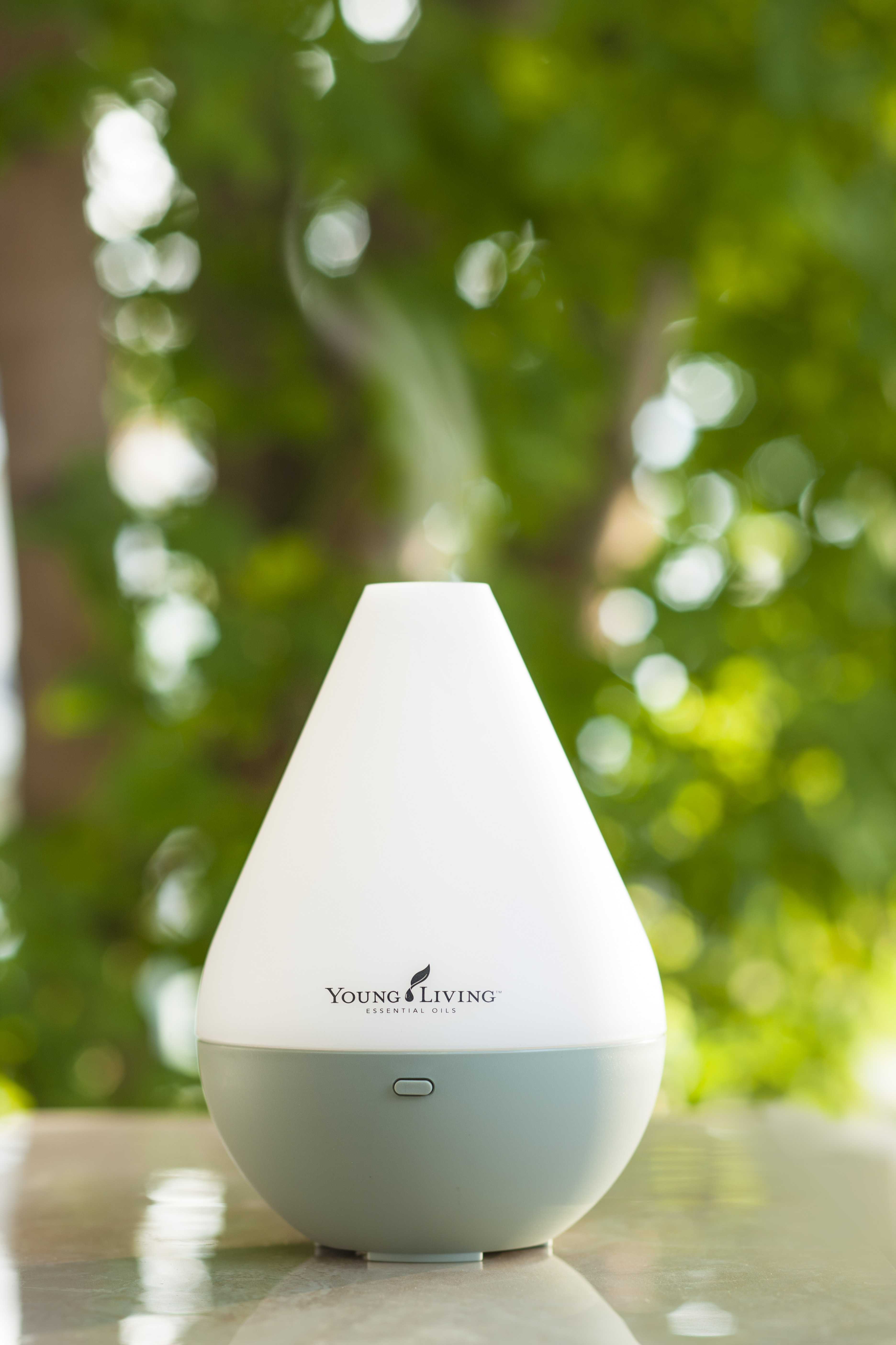young livings home diffuser - HD3744×5616