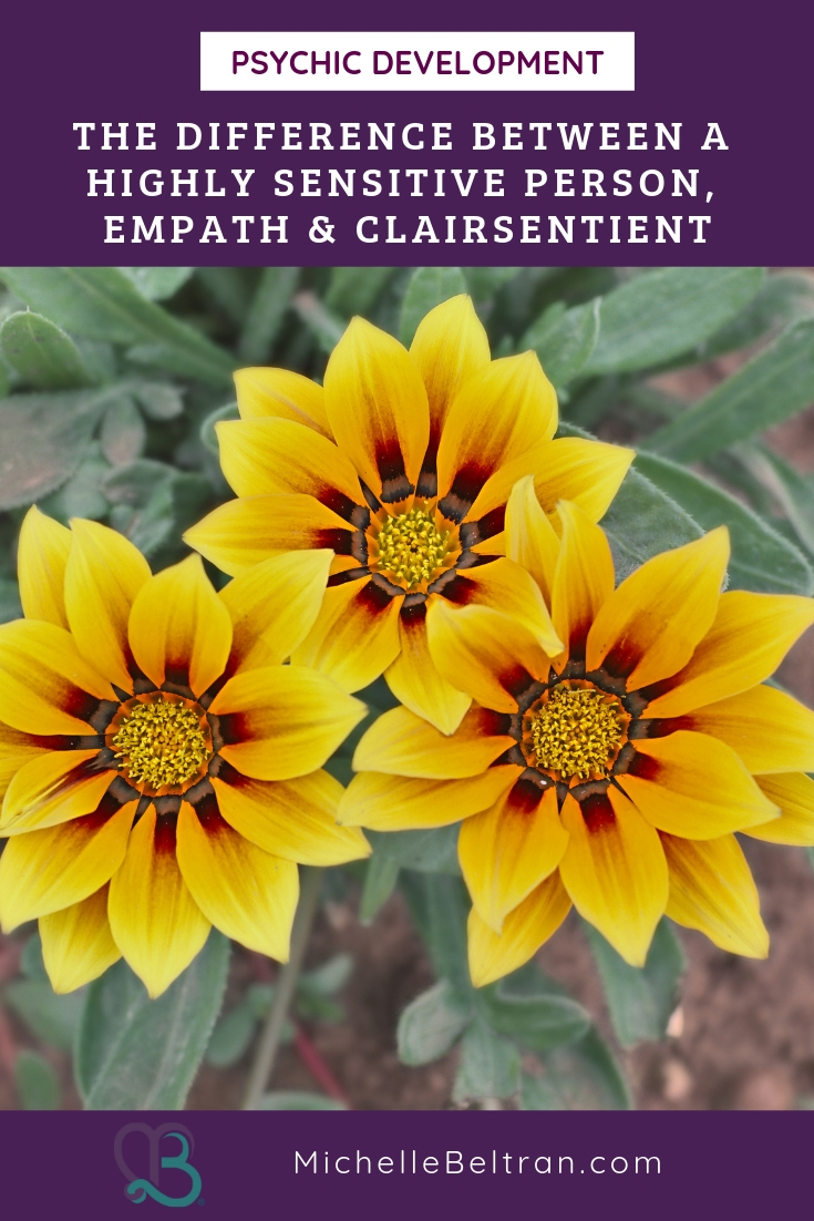 How to Distinguish Between the Highly Sensitive Person, Empath and